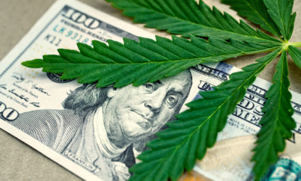 The Marijuana Business and the Law